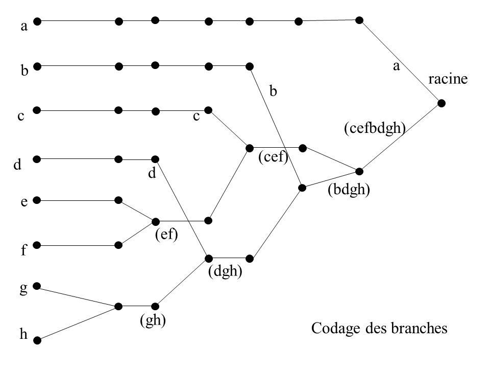 a b c d e f g h (gh) (ef) (dgh) (cef) (bdgh) (cefbdgh) racine a b c d 0 1 1 CODE DE LA BRANCHE