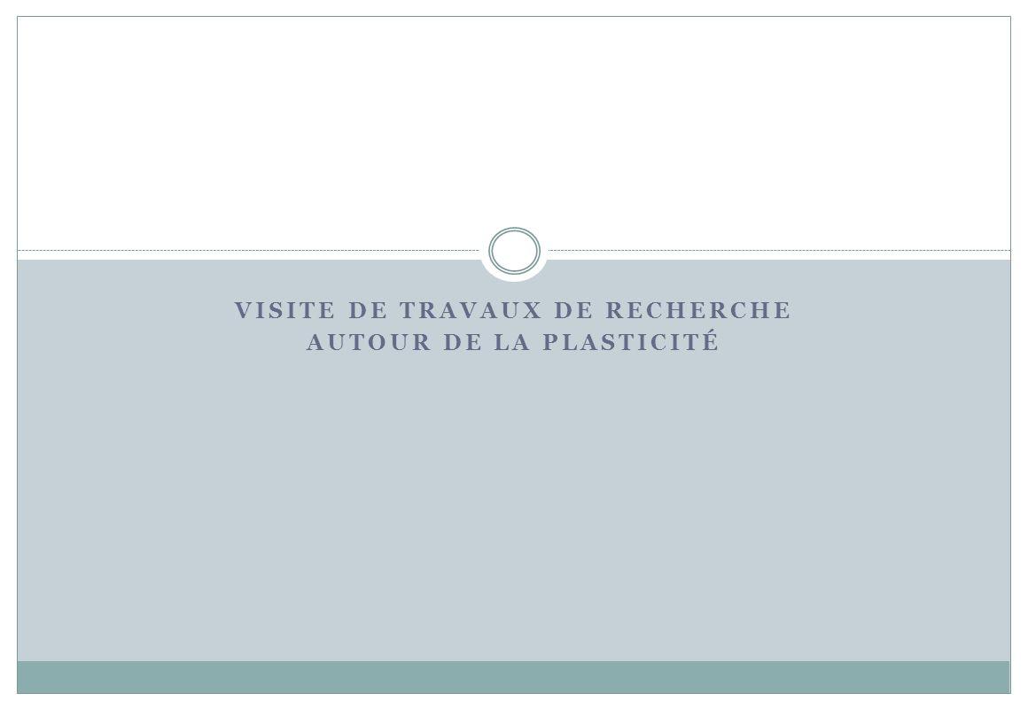 VISITE DE TRAVAUX DE RECHERCHE AUTOUR DE LA PLASTICITÉ