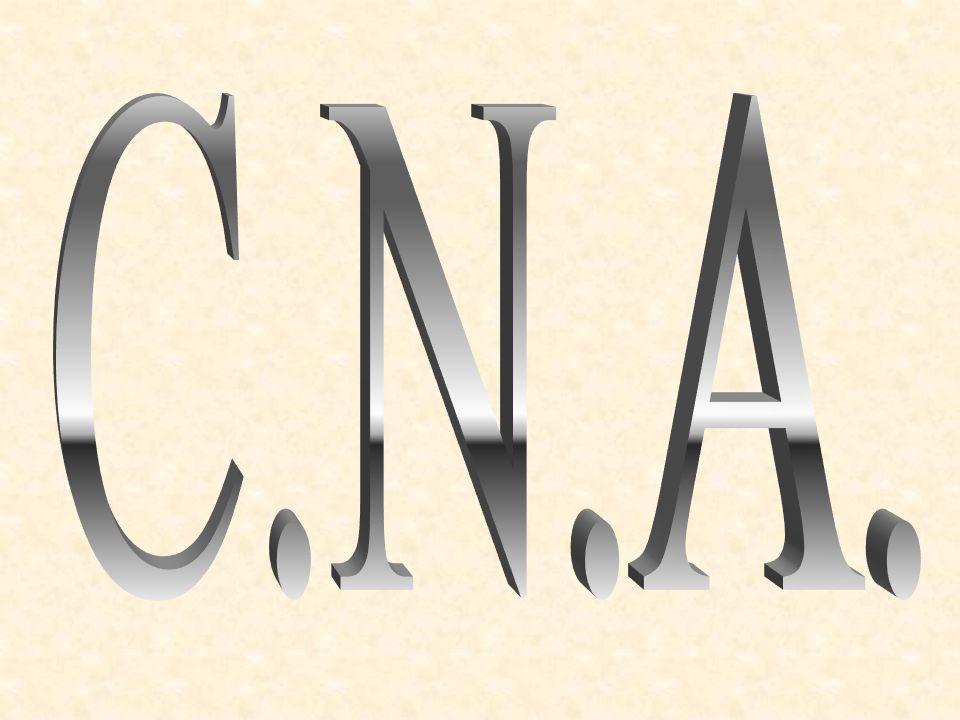Sommaire Exemples de C.A.N. Exemples de C.N.A. Convertisseur JDAC Convertisseurs à intégration analogique Convertisseurs à intégration numérique Conve