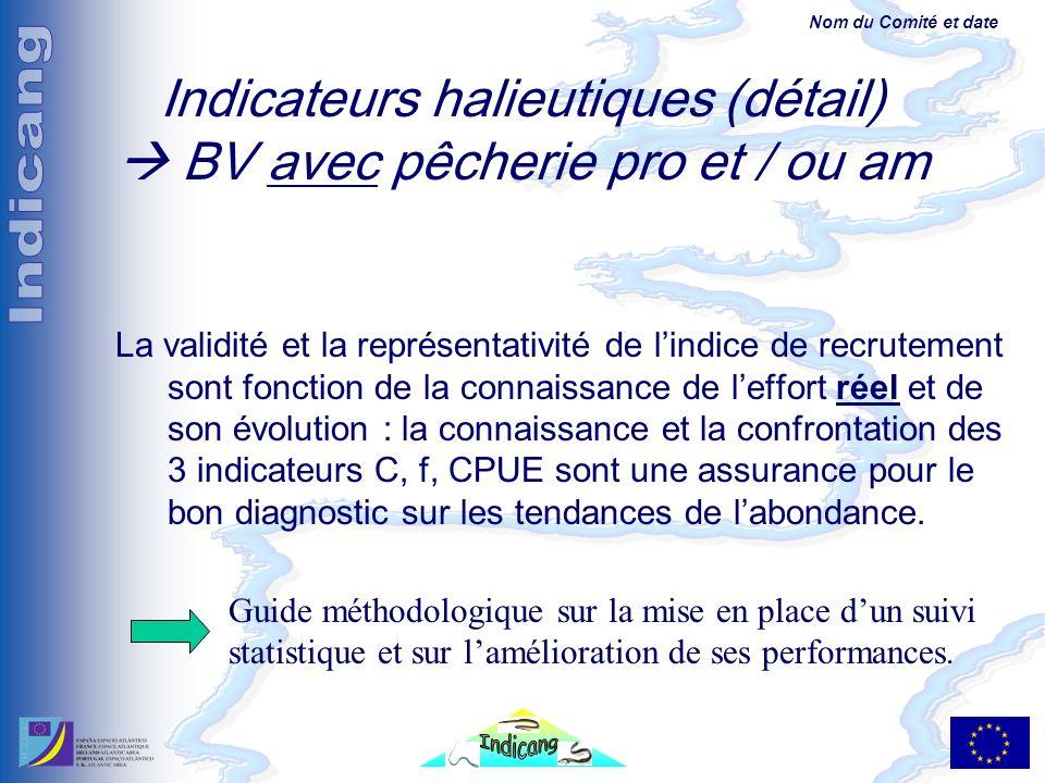 Nom du Comité et date Indicateurs halieutiques (détail) BV avec pêcherie pro et / ou am La validité et la représentativité de lindice de recrutement sont fonction de la connaissance de leffort réel et de son évolution : la connaissance et la confrontation des 3 indicateurs C, f, CPUE sont une assurance pour le bon diagnostic sur les tendances de labondance.