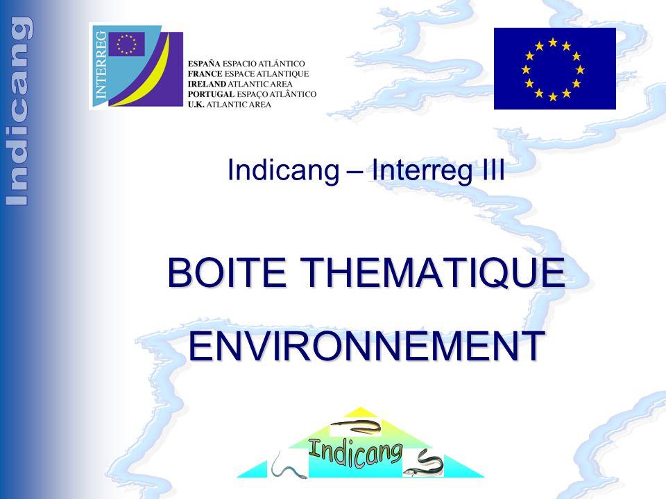 Séminaire Indicang 18 et 19 mai 2005 Indicang – Interreg III BOITE THEMATIQUE ENVIRONNEMENT