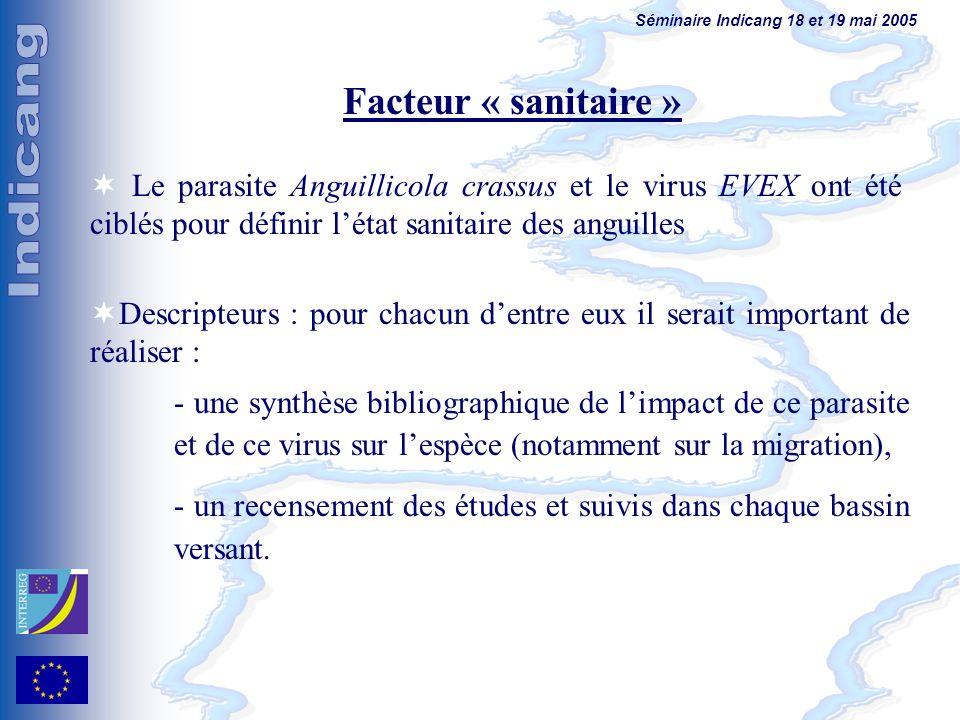 Séminaire Indicang 18 et 19 mai 2005 Facteur « sanitaire » Le parasite Anguillicola crassus et le virus EVEX ont été ciblés pour définir létat sanitai