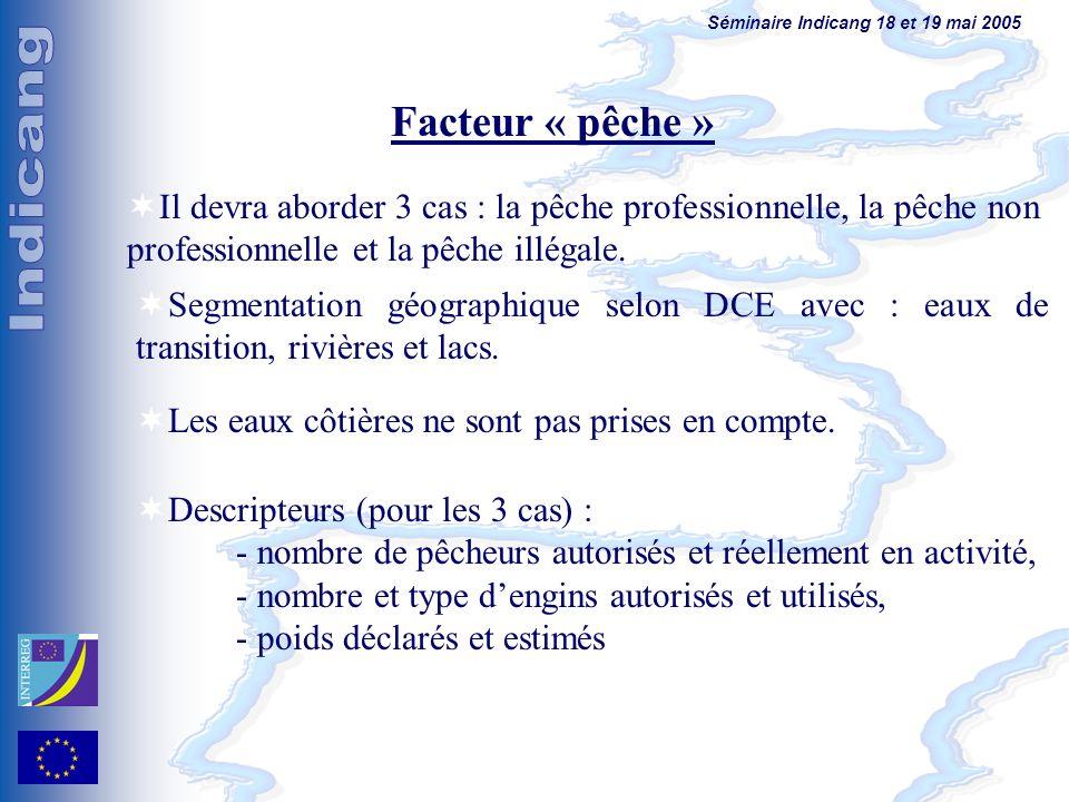 Séminaire Indicang 18 et 19 mai 2005 Facteur « pêche » Il devra aborder 3 cas : la pêche professionnelle, la pêche non professionnelle et la pêche illégale.
