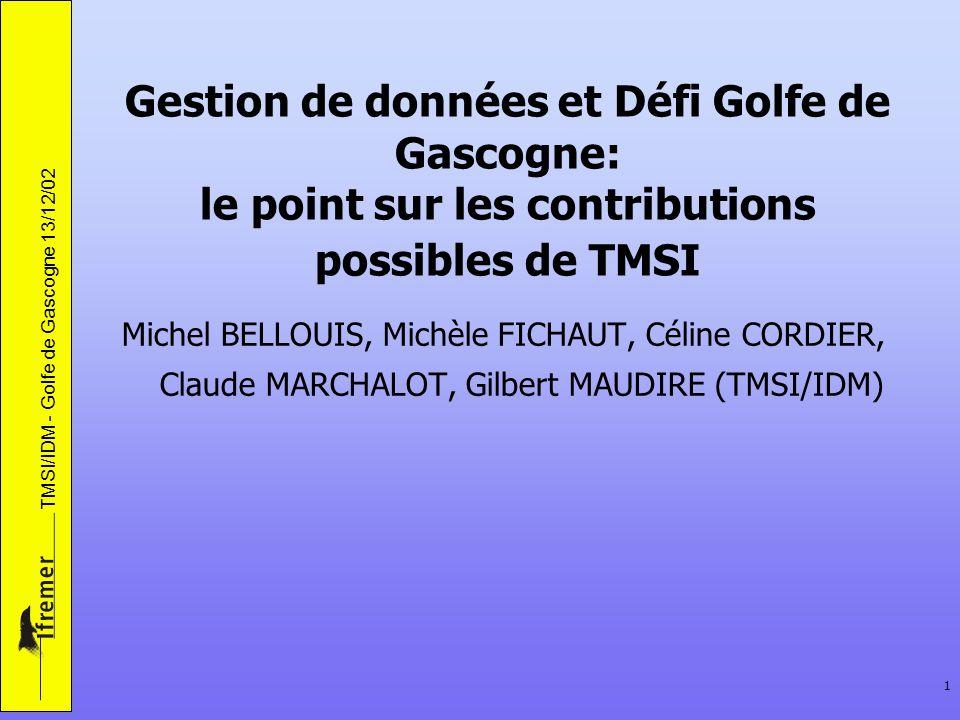 TMSI/IDM - Golfe de Gascogne 13/12/02 1 Gestion de données et Défi Golfe de Gascogne: le point sur les contributions possibles de TMSI Michel BELLOUIS