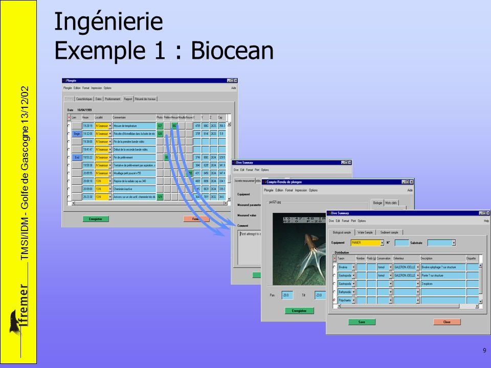 TMSI/IDM - Golfe de Gascogne 13/12/02 9 Ingénierie Exemple 1 : Biocean