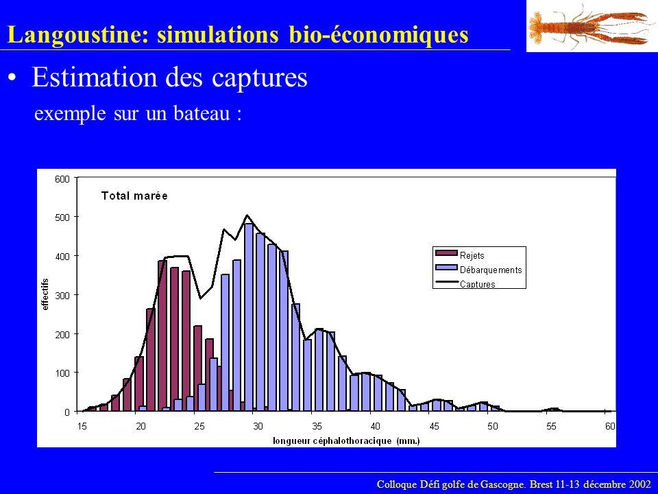 Langoustine: simulations bio-économiques Colloque Défi golfe de Gascogne. Brest 11-13 décembre 2002 Estimation des captures exemple sur un bateau :