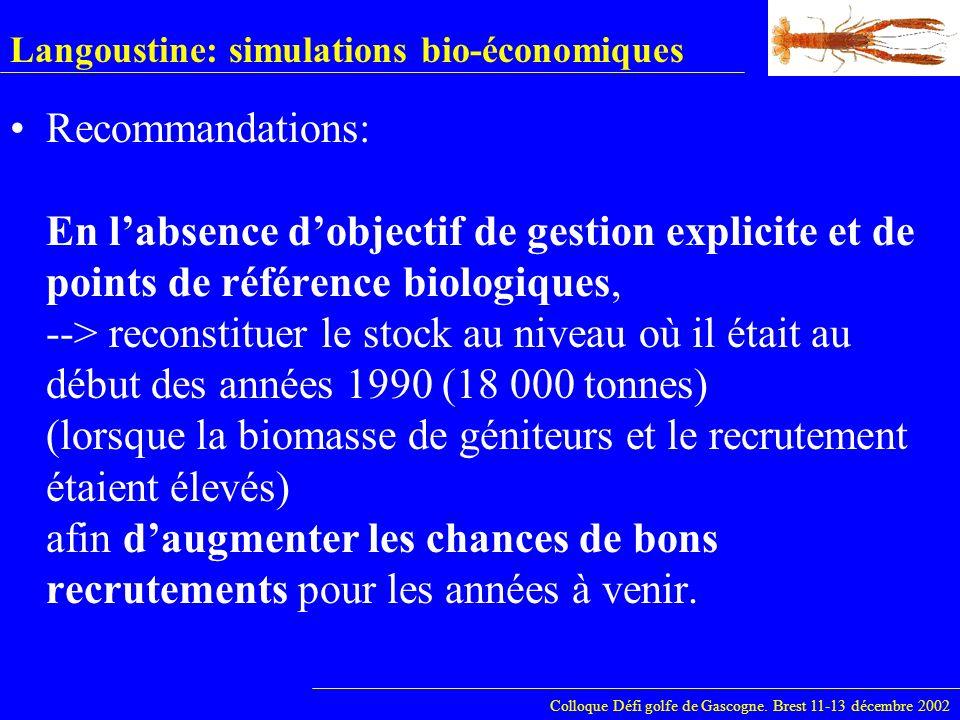 Langoustine: simulations bio-économiques Colloque Défi golfe de Gascogne. Brest 11-13 décembre 2002 Recommandations: En labsence dobjectif de gestion