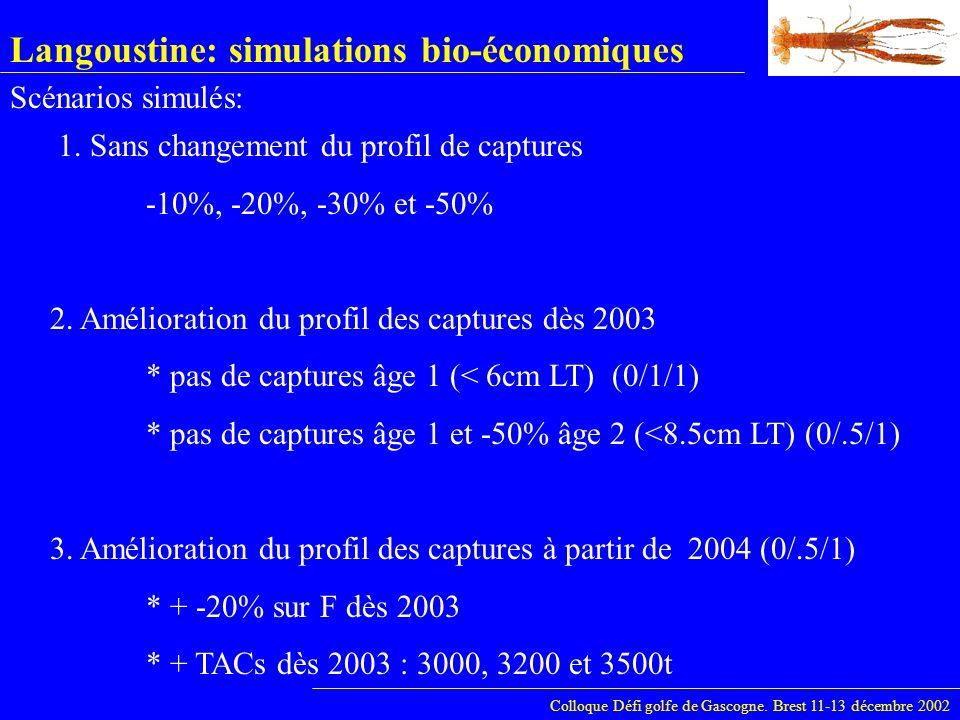 Langoustine: simulations bio-économiques Colloque Défi golfe de Gascogne. Brest 11-13 décembre 2002 1. Sans changement du profil de captures -10%, -20
