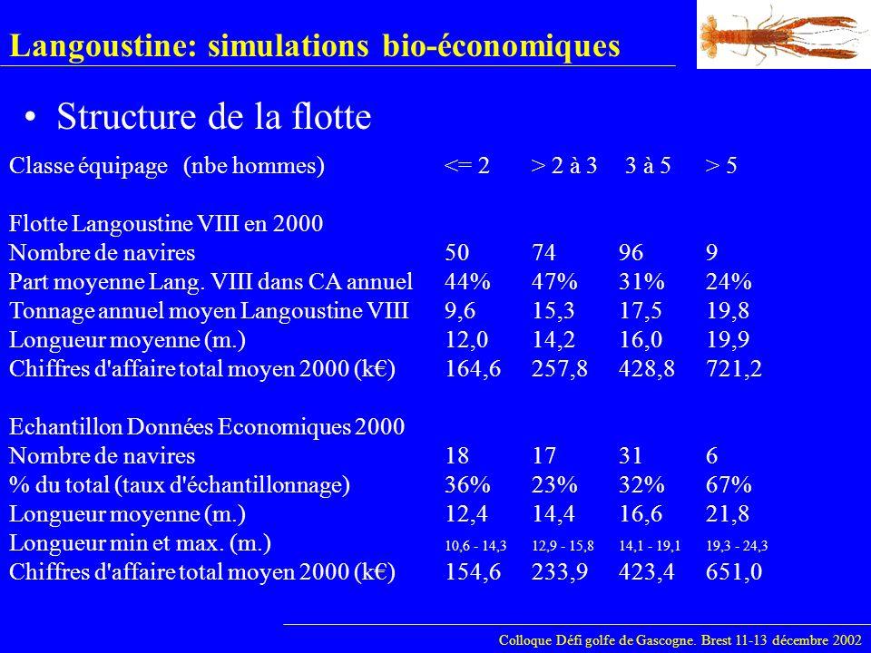 Langoustine: simulations bio-économiques Structure de la flotte Colloque Défi golfe de Gascogne. Brest 11-13 décembre 2002 Classe équipage(nbe hommes)