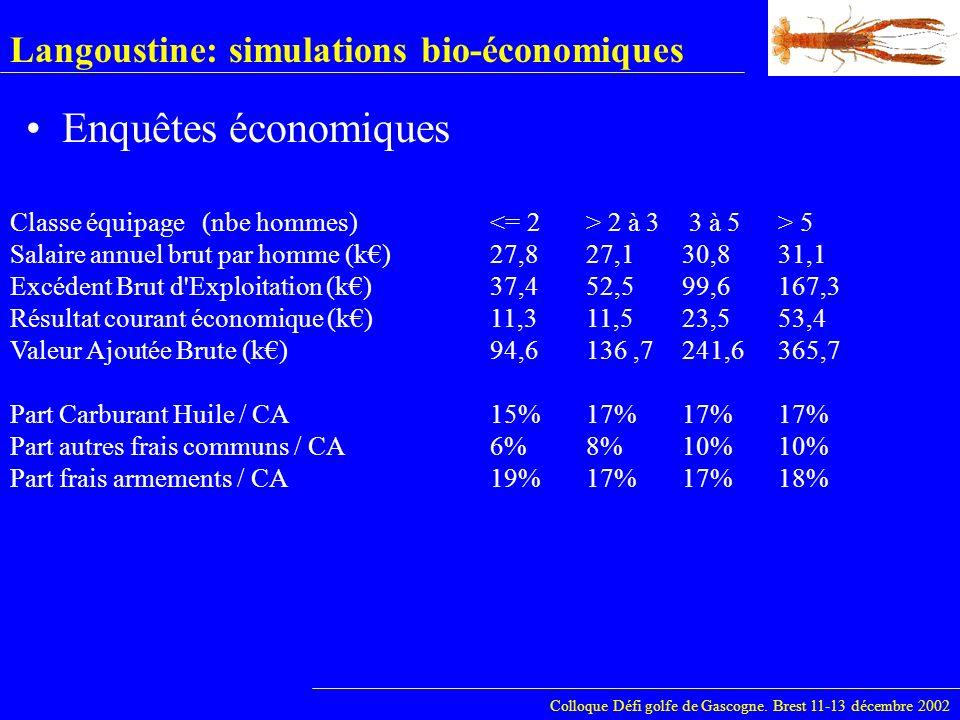 Langoustine: simulations bio-économiques Enquêtes économiques Colloque Défi golfe de Gascogne. Brest 11-13 décembre 2002 Classe équipage(nbe hommes) 2