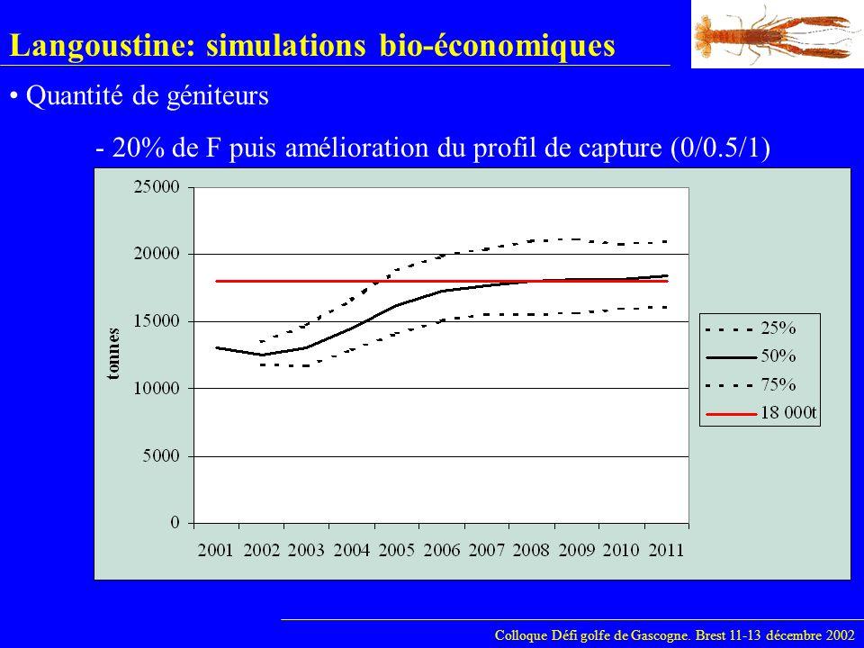 Langoustine: simulations bio-économiques Colloque Défi golfe de Gascogne. Brest 11-13 décembre 2002 Quantité de géniteurs - 20% de F puis amélioration