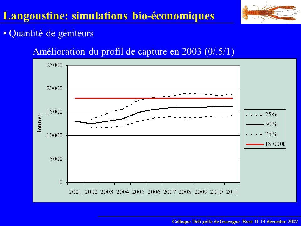 Langoustine: simulations bio-économiques Colloque Défi golfe de Gascogne. Brest 11-13 décembre 2002 Quantité de géniteurs Amélioration du profil de ca