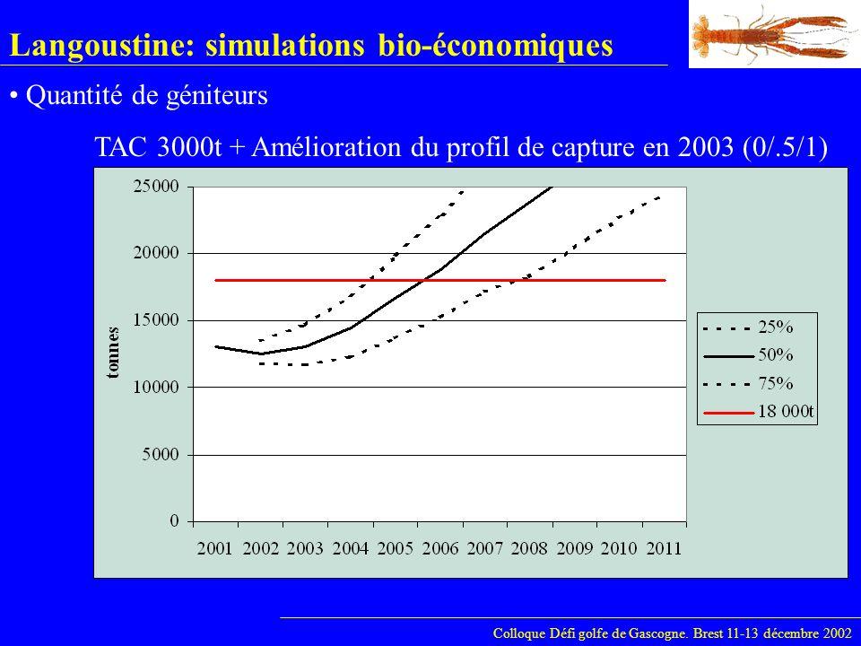 Langoustine: simulations bio-économiques Colloque Défi golfe de Gascogne. Brest 11-13 décembre 2002 Quantité de géniteurs TAC 3000t + Amélioration du