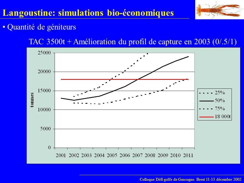 Langoustine: simulations bio-économiques Colloque Défi golfe de Gascogne. Brest 11-13 décembre 2002 Quantité de géniteurs TAC 3500t + Amélioration du