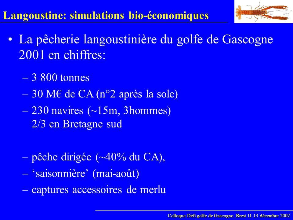 Langoustine: simulations bio-économiques La pêcherie langoustinière du golfe de Gascogne Evolution en chiffres: Colloque Défi golfe de Gascogne.