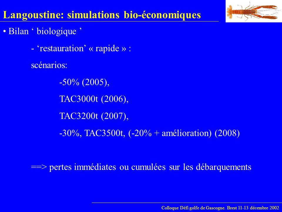Langoustine: simulations bio-économiques Colloque Défi golfe de Gascogne. Brest 11-13 décembre 2002 Bilan biologique - restauration « rapide » : scéna