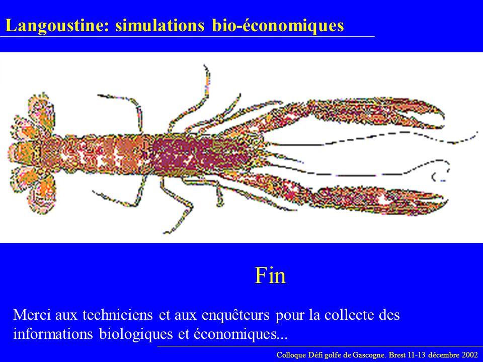 Langoustine: simulations bio-économiques Colloque Défi golfe de Gascogne. Brest 11-13 décembre 2002 Fin Merci aux techniciens et aux enquêteurs pour l