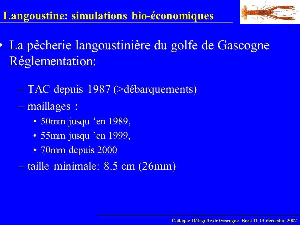 Langoustine: simulations bio-économiques –TAC depuis 1987 (>débarquements) –maillages : 50mm jusqu en 1989, 55mm jusqu en 1999, 70mm depuis 2000 –tail