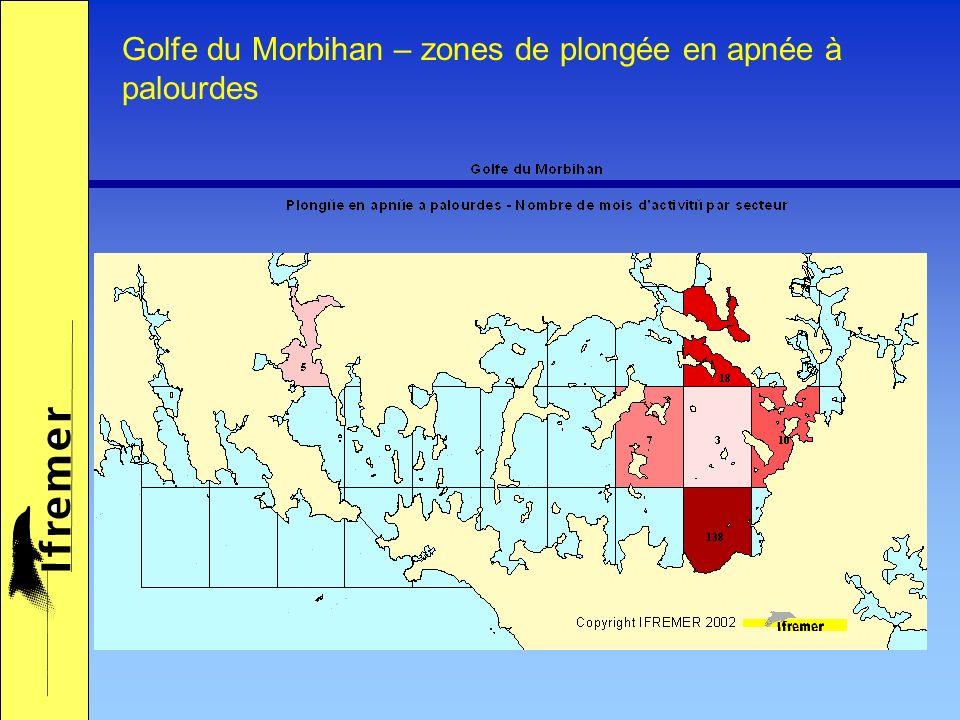 Golfe du Morbihan – zones de plongée en apnée à palourdes