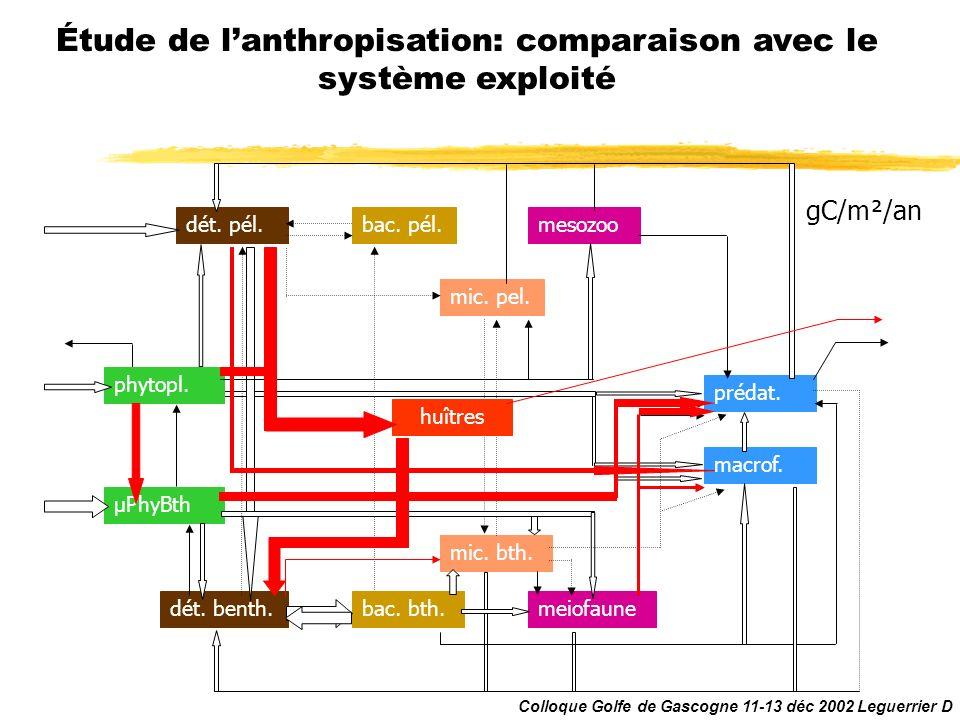 Système sans huîtres Étude de lanthropisation: comparaison avec le système exploité meiofaune mic. bth. phytopl. µPhyBth dét. benth. dét. pél.bac. pél
