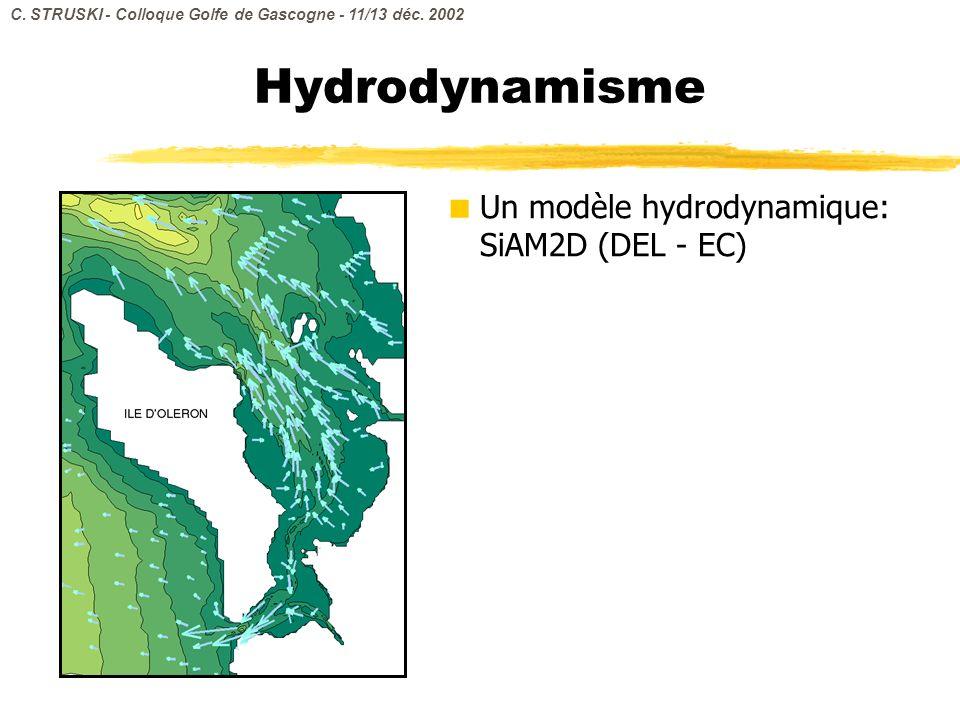 Hydrodynamisme Un modèle hydrodynamique: SiAM2D (DEL - EC) C. STRUSKI - Colloque Golfe de Gascogne - 11/13 déc. 2002
