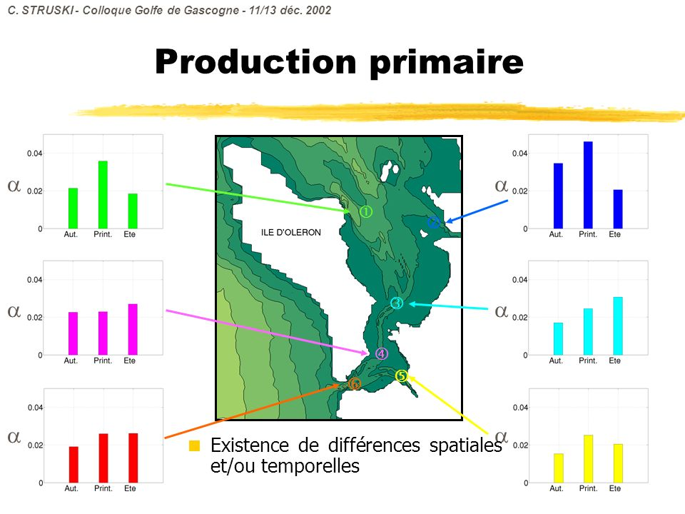 Production primaire Existence de différences spatiales et/ou temporelles C. STRUSKI - Colloque Golfe de Gascogne - 11/13 déc. 2002