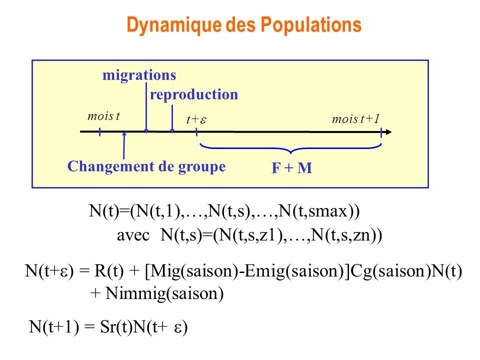 Dynamique des Populations N(t+ ) = R(t) + [Mig(saison)-Emig(saison)]Cg(saison)N(t) + Nimmig(saison) N(t+1) = Sr(t)N(t+ ) avec N(t,s)=(N(t,s,z1),…,N(t,s,zn)) N(t)=(N(t,1),…,N(t,s),…,N(t,smax)) reproduction mois t mois t+1 migrations Changement de groupe F + M t+