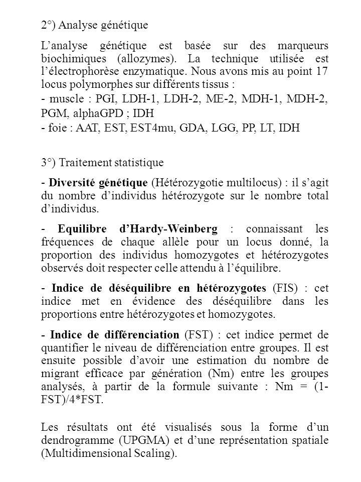 2°) Analyse génétique Lanalyse génétique est basée sur des marqueurs biochimiques (allozymes).