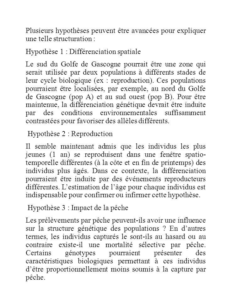 Plusieurs hypothèses peuvent être avancées pour expliquer une telle structuration : Hypothèse 1 : Différenciation spatiale Le sud du Golfe de Gascogne pourrait être une zone qui serait utilisée par deux populations à différents stades de leur cycle biologique (ex : reproduction).