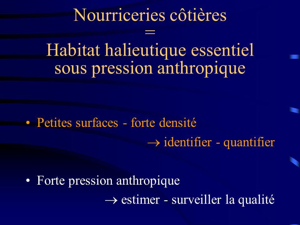 Nourriceries côtières = Habitat halieutique essentiel sous pression anthropique Petites surfaces - forte densité identifier - quantifier Forte pression anthropique estimer - surveiller la qualité