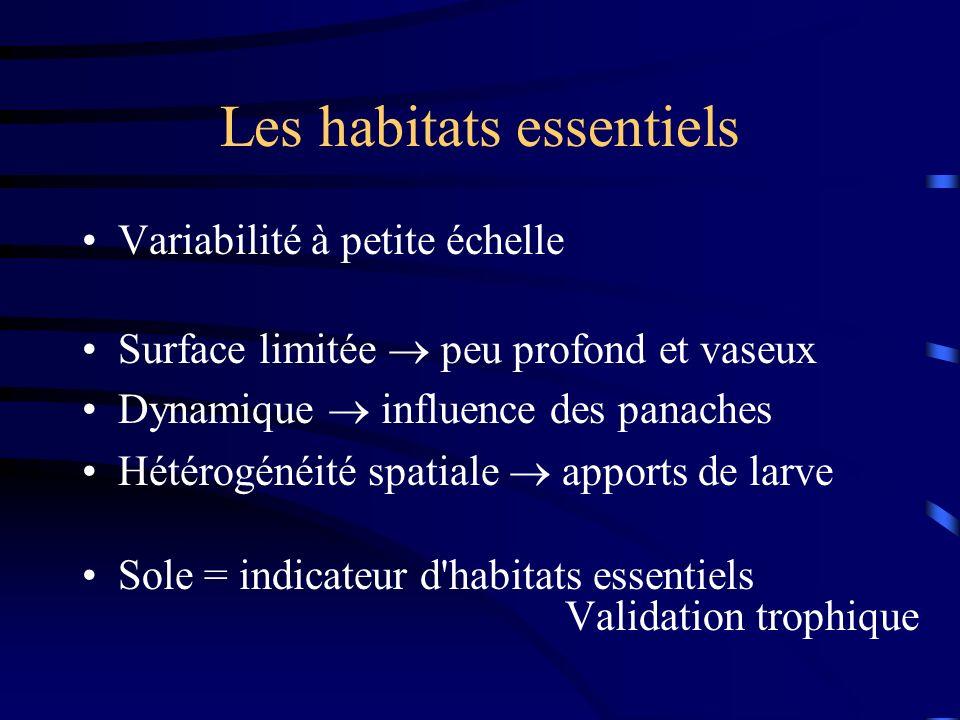 Les habitats essentiels Variabilité à petite échelle Surface limitée peu profond et vaseux Dynamique influence des panaches Hétérogénéité spatiale apports de larve Sole = indicateur d habitats essentiels Validation trophique