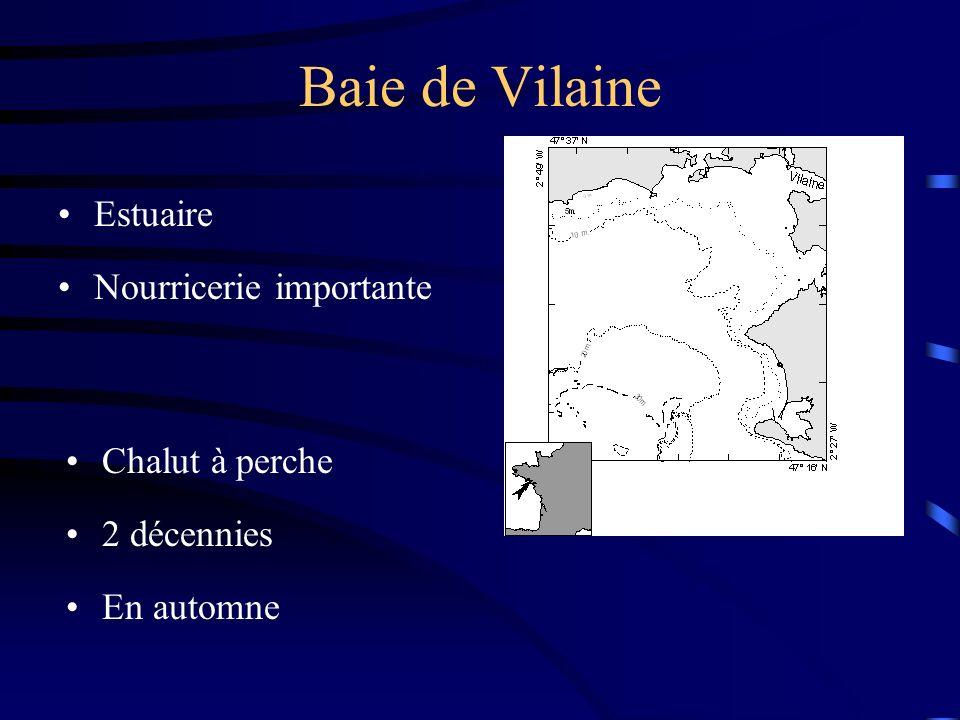 Baie de Vilaine Estuaire Nourricerie importante Chalut à perche 2 décennies En automne