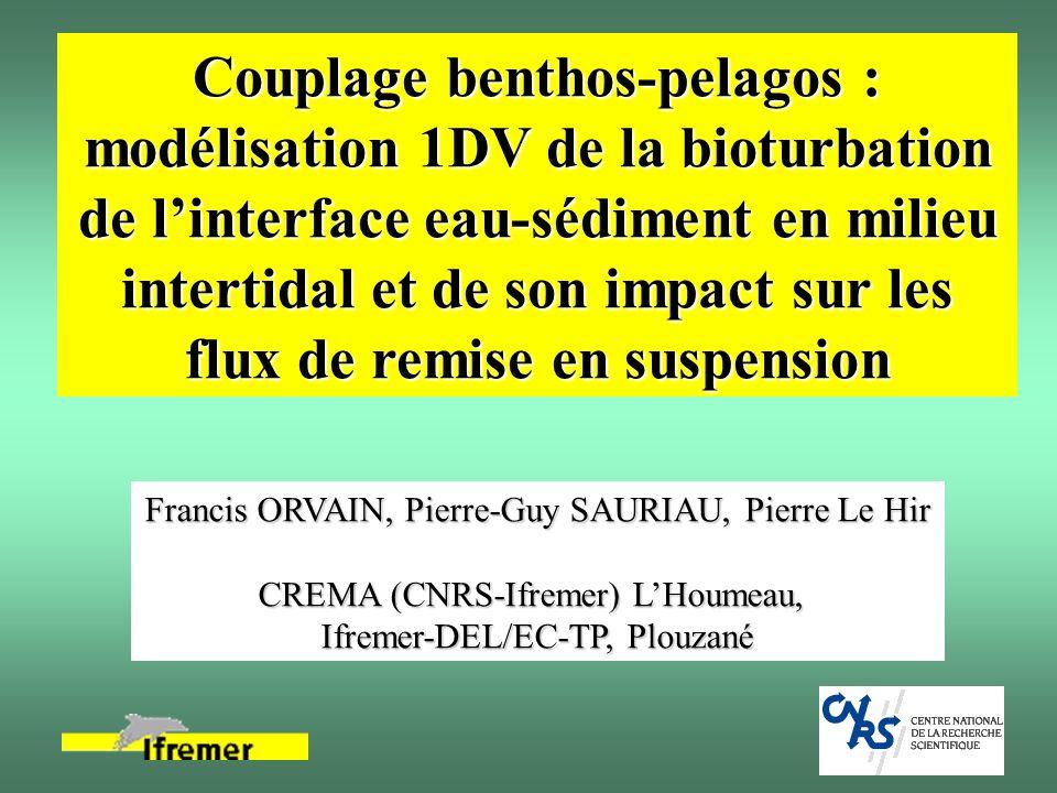Couplage benthos-pelagos : modélisation 1DV de la bioturbation de linterface eau-sédiment en milieu intertidal et de son impact sur les flux de remise