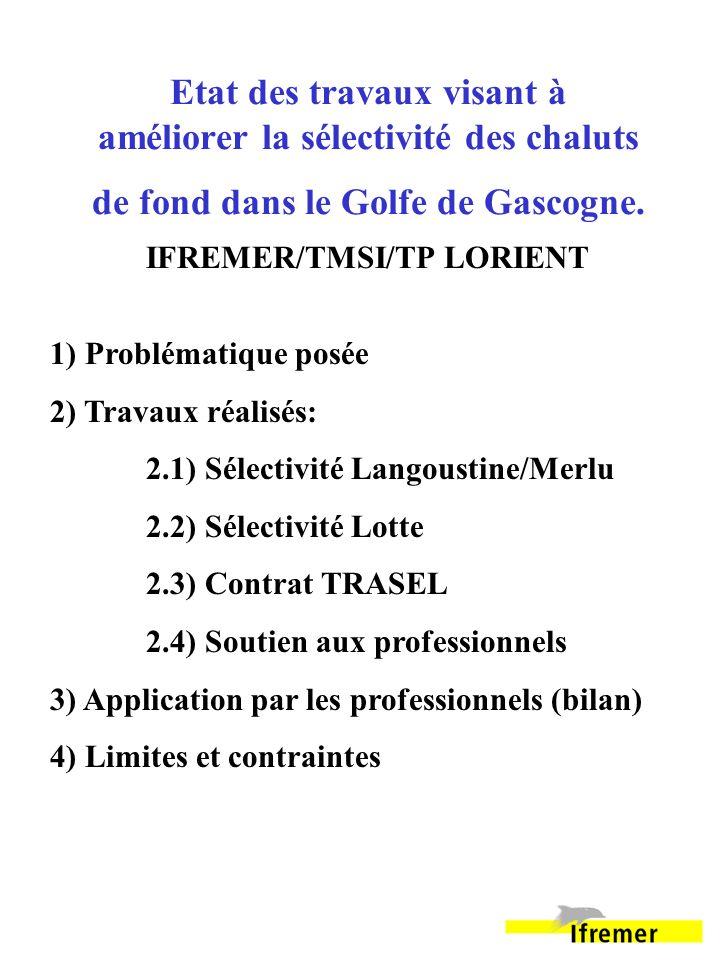 Etat des travaux visant à améliorer la sélectivité des chaluts de fond dans le Golfe de Gascogne. IFREMER/TMSI/TP LORIENT 1) Problématique posée 2) Tr