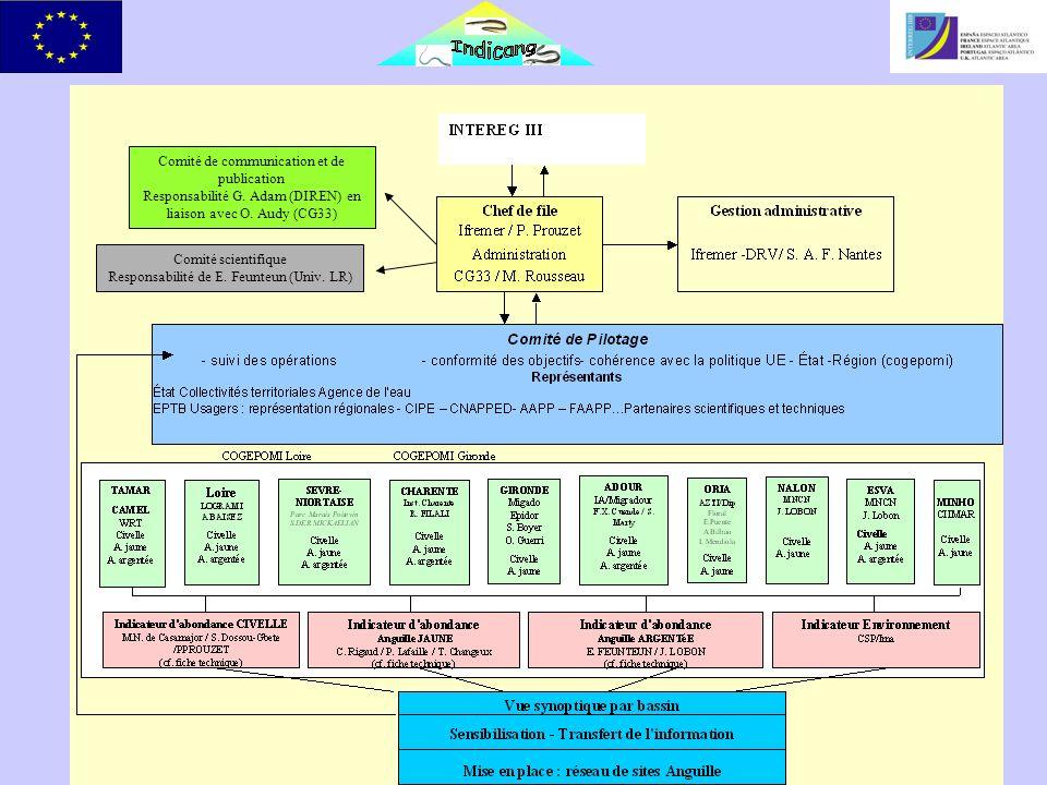 Un bilan déjà important Comité de communication et de publication Responsabilité G.