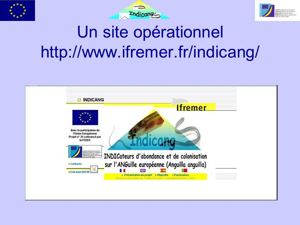 Un site opérationnel http://www.ifremer.fr/indicang/