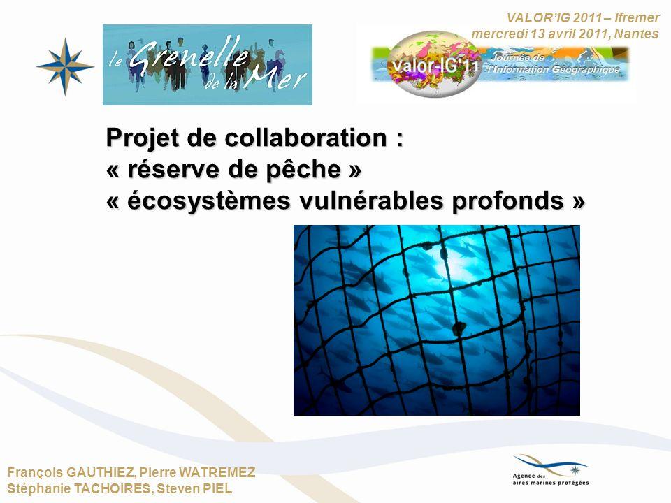 François GAUTHIEZ, Pierre WATREMEZ Stéphanie TACHOIRES, Steven PIEL Projet de collaboration : « réserve de pêche » « écosystèmes vulnérables profonds