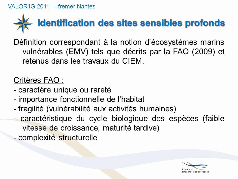 Définition correspondant à la notion décosystèmes marins vulnérables (EMV) tels que décrits par la FAO (2009) et retenus dans les travaux du CIEM. Cri
