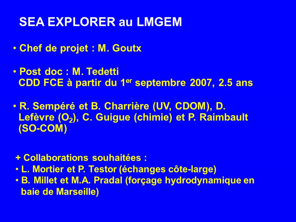 Chef de projet : M. Goutx Post doc : M. Tedetti CDD FCE à partir du 1 er septembre 2007, 2.5 ans R. Sempéré et B. Charrière (UV, CDOM), D. Lefèvre (O