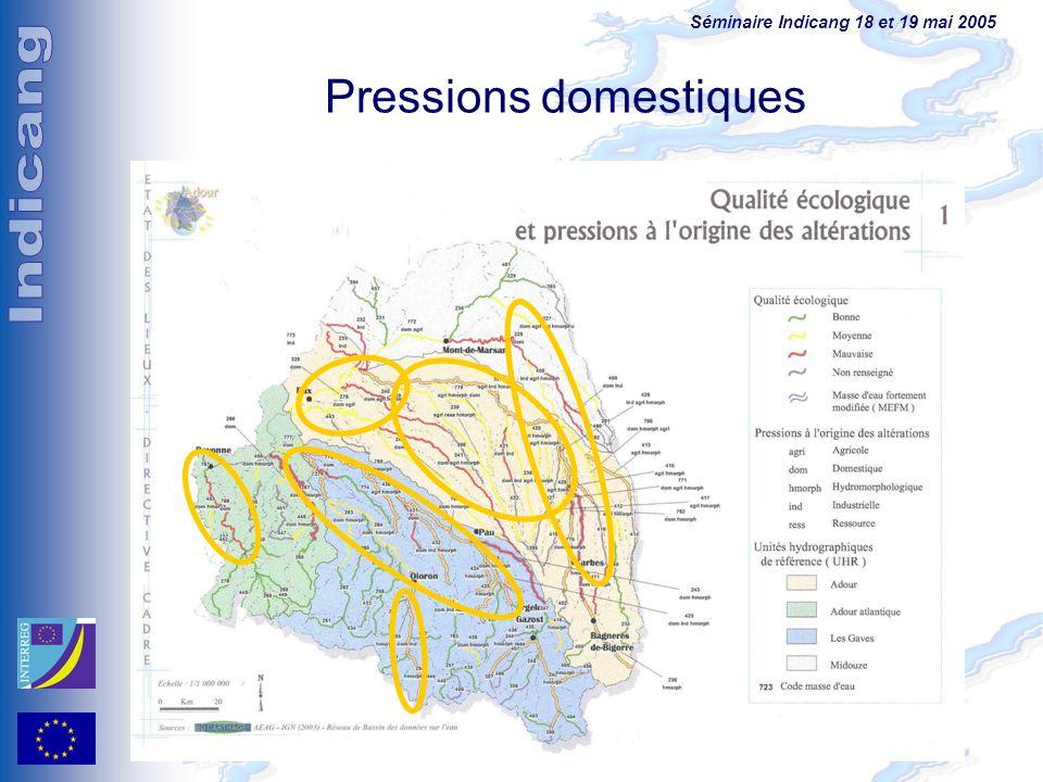 Séminaire Indicang 18 et 19 mai 2005 Pressions domestiques