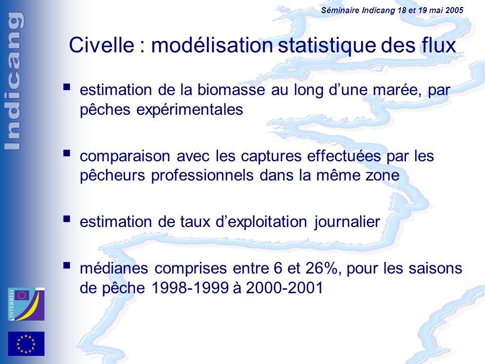 Séminaire Indicang 18 et 19 mai 2005 Civelle : modélisation statistique des flux estimation de la biomasse au long dune marée, par pêches expérimental