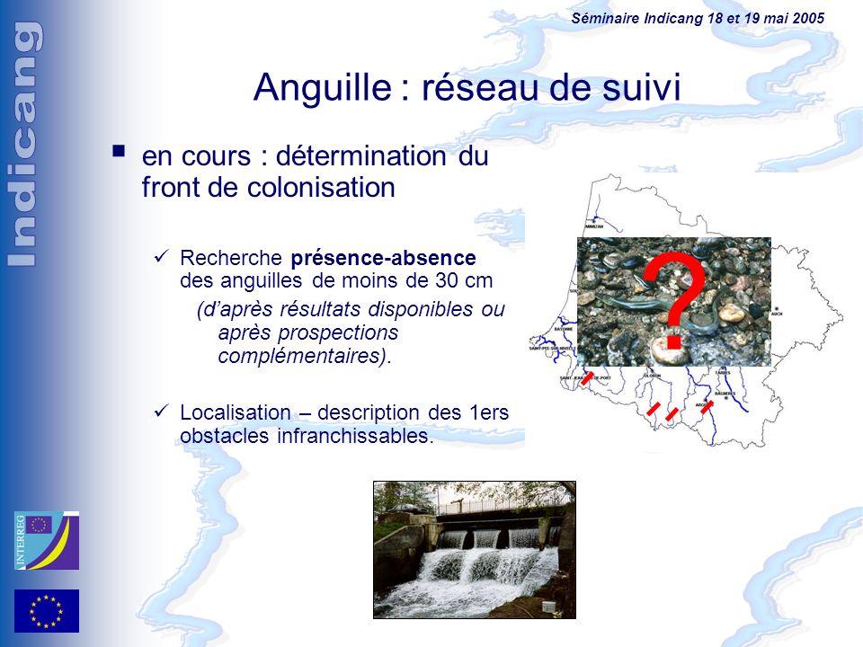 Séminaire Indicang 18 et 19 mai 2005 en cours : détermination du front de colonisation Recherche présence-absence des anguilles de moins de 30 cm (dap