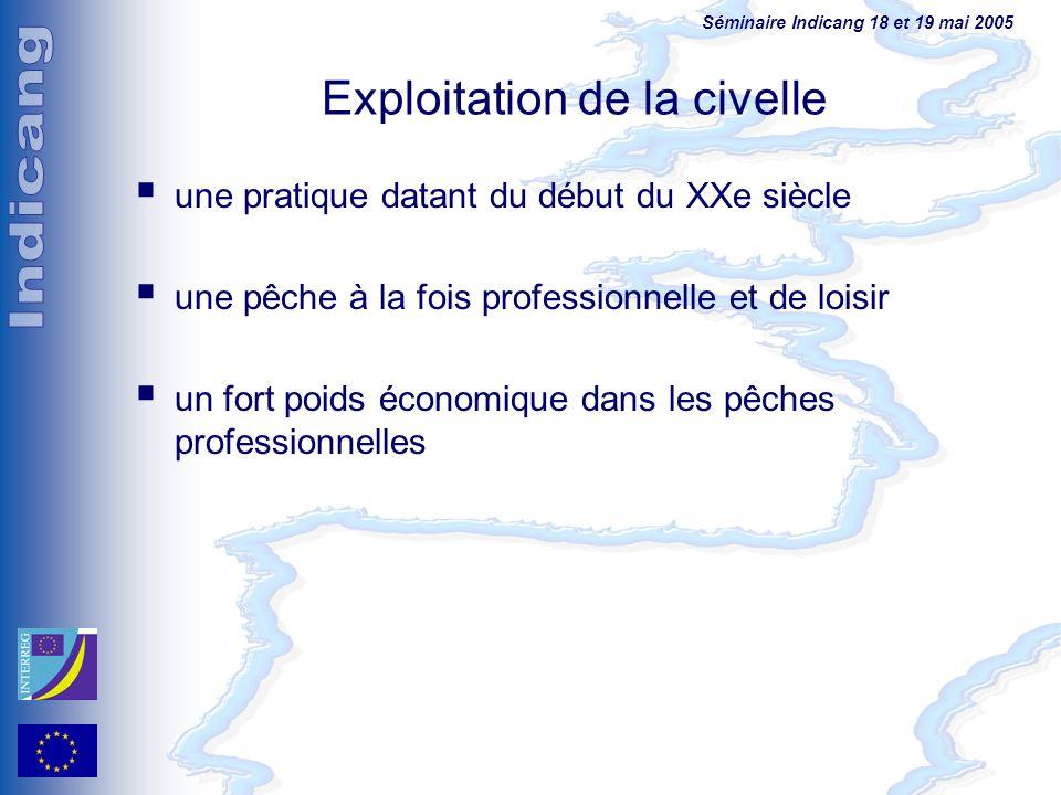Séminaire Indicang 18 et 19 mai 2005 Exploitation de la civelle une pratique datant du début du XXe siècle une pêche à la fois professionnelle et de l