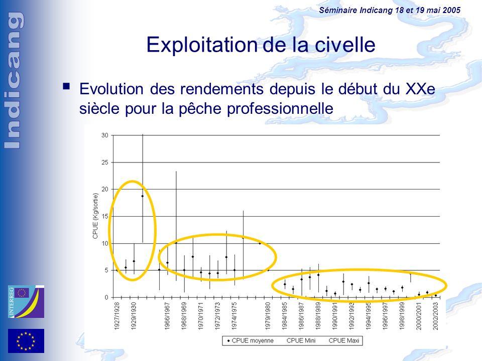 Séminaire Indicang 18 et 19 mai 2005 Exploitation de la civelle Evolution des rendements depuis le début du XXe siècle pour la pêche professionnelle