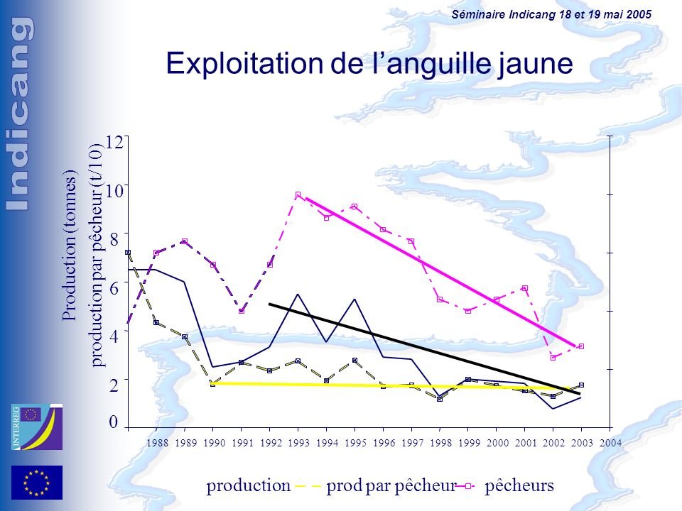 Séminaire Indicang 18 et 19 mai 2005 1988 Exploitation de languille jaune 0 2 4 6 8 10 12 198719891990199119921993199419951996199719981999200020012002