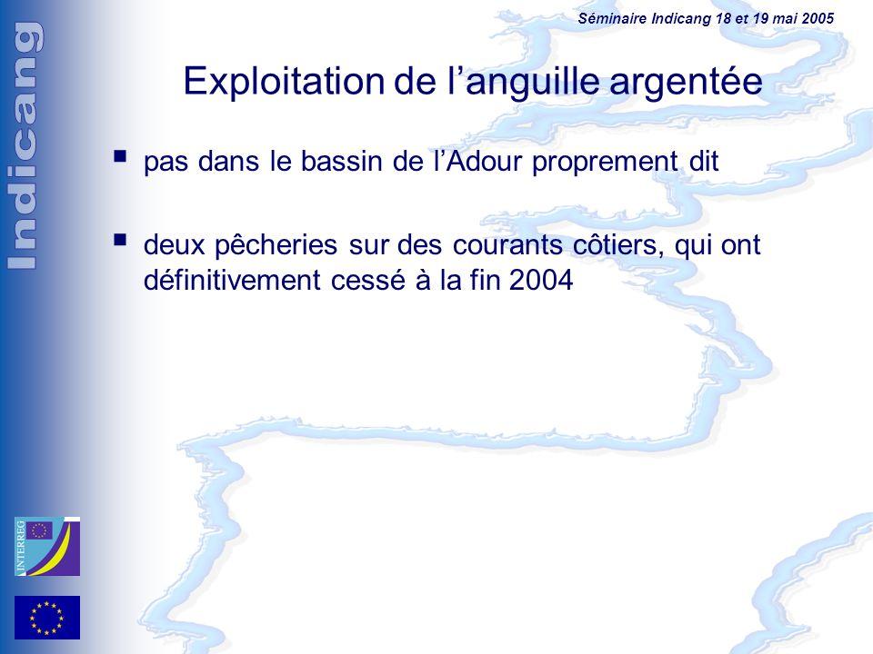 Séminaire Indicang 18 et 19 mai 2005 Exploitation de languille argentée pas dans le bassin de lAdour proprement dit deux pêcheries sur des courants cô