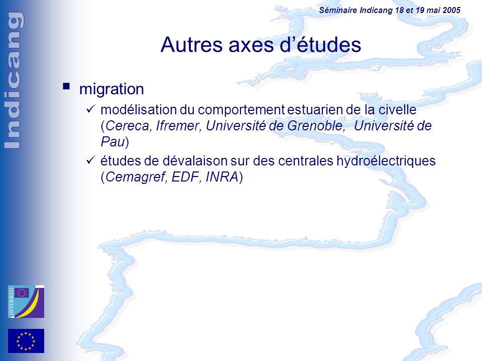 Séminaire Indicang 18 et 19 mai 2005 Autres axes détudes migration modélisation du comportement estuarien de la civelle (Cereca, Ifremer, Université d