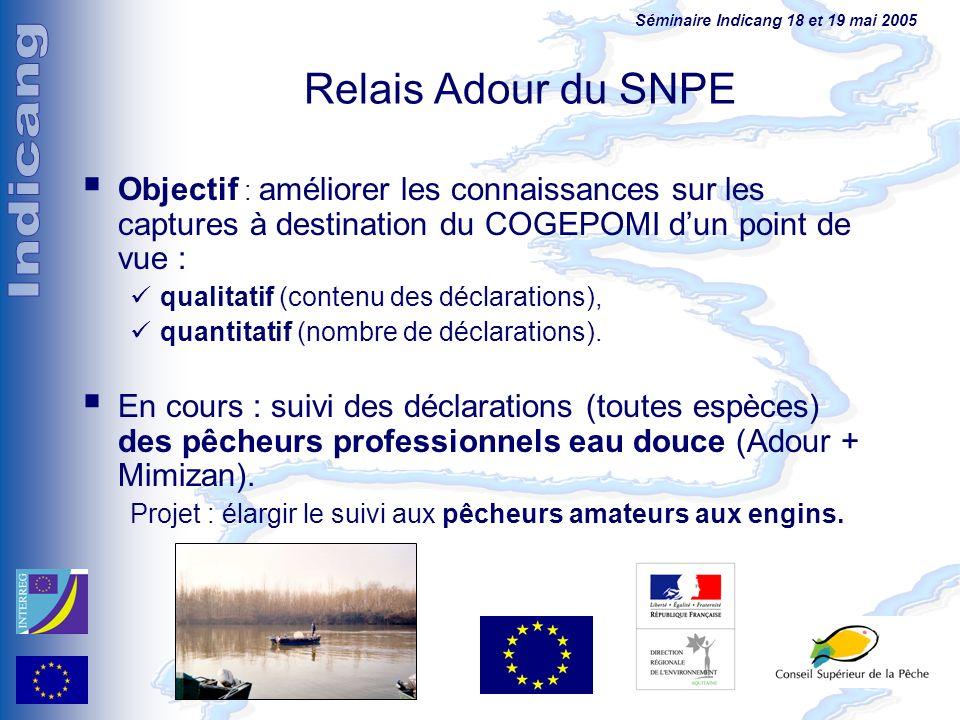 Séminaire Indicang 18 et 19 mai 2005 Objectif : améliorer les connaissances sur les captures à destination du COGEPOMI dun point de vue : qualitatif (