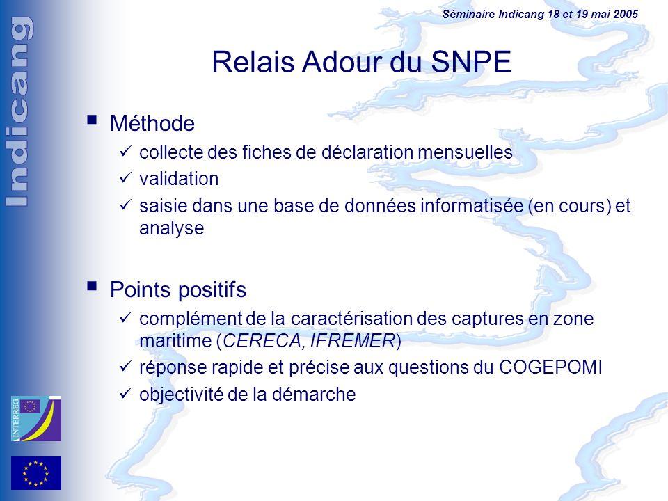 Séminaire Indicang 18 et 19 mai 2005 Relais Adour du SNPE Méthode collecte des fiches de déclaration mensuelles validation saisie dans une base de don