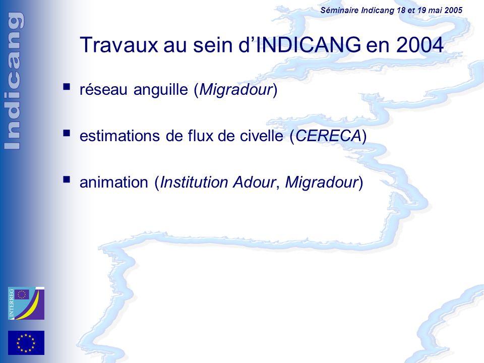Séminaire Indicang 18 et 19 mai 2005 Travaux au sein dINDICANG en 2004 réseau anguille (Migradour) estimations de flux de civelle (CERECA) animation (